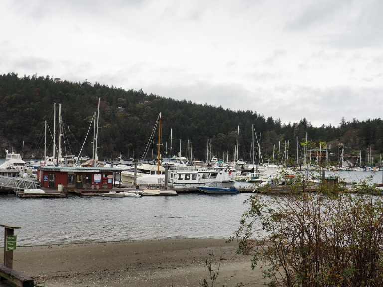 One of the many marinas on Orcas, this one is in Eastsound.   (Image: Kate Neidigh)