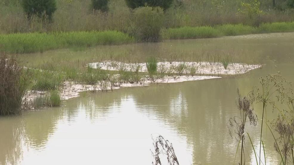 In the last two years, the Baxters say runoff sediment from a sand washing company is draining into the water and reducing the depth. (WSYX/WTTE)