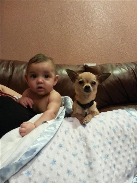 <a  href=&quot;http://share.valleycentral.com/Media/View/3355577&quot;>Jeremy James &amp; Peanut</a>