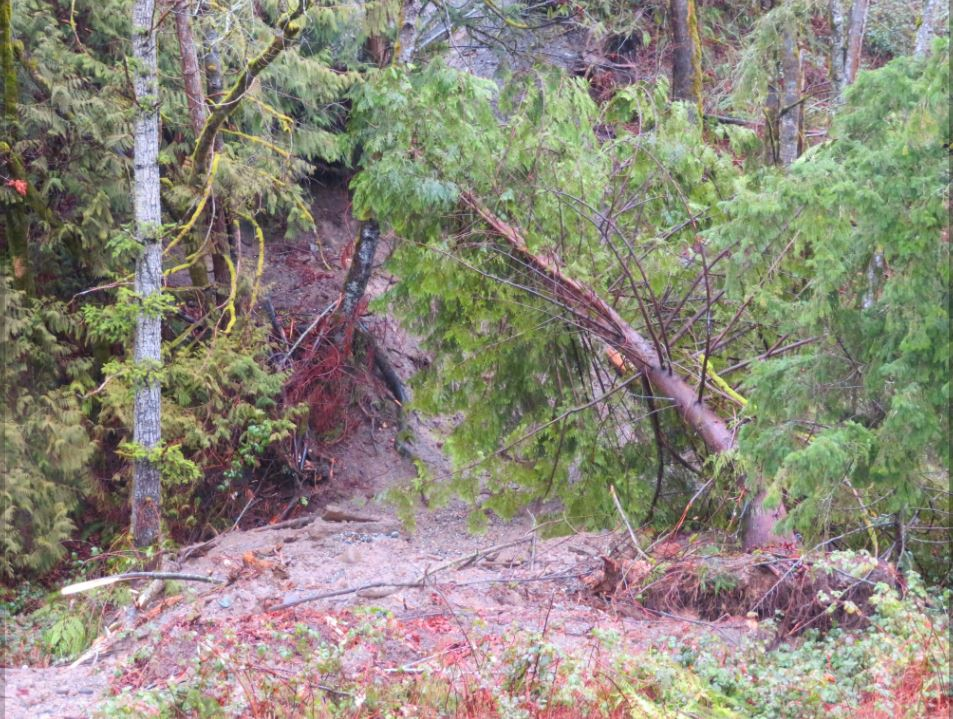 A slide undermined Prevedell Road off Highway 20 in Lyman. (Photo: KOMO News)