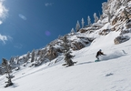 041 Powder Snowboarding_Solitude Mountain Resort.jpg