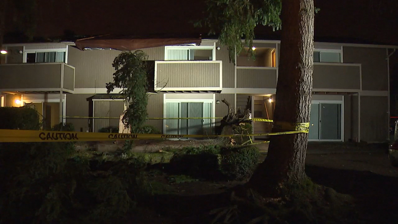 Crews work to clear a 40-foot-tall tree that fell onto an apartment complex in Kent Thursday night, March 8, 2018. (Photo: KOMO News)