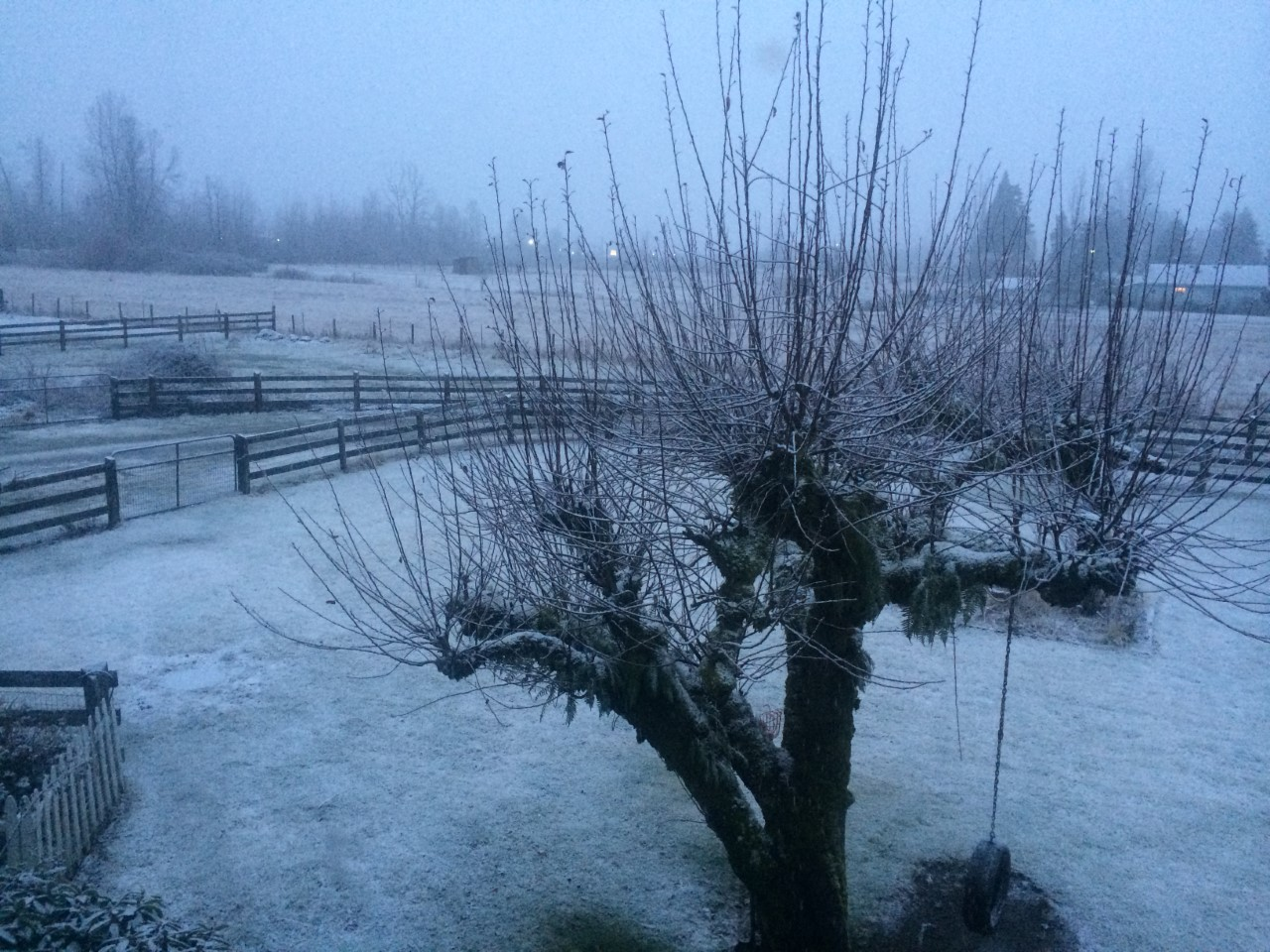 Snow in Buckley (Photo: Keith Eldridge)