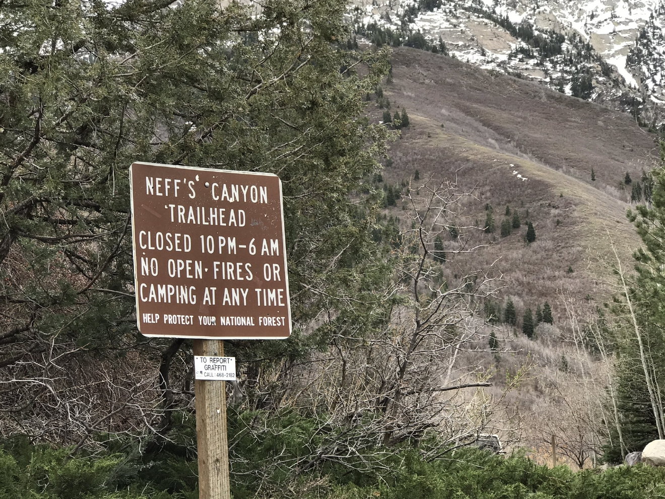 Human remains found in Neffs Canyon. (Photo: Jeremy Harris / KUTV)