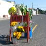 Boy killed on 7th birthday in fall from float during parade in Oregon town
