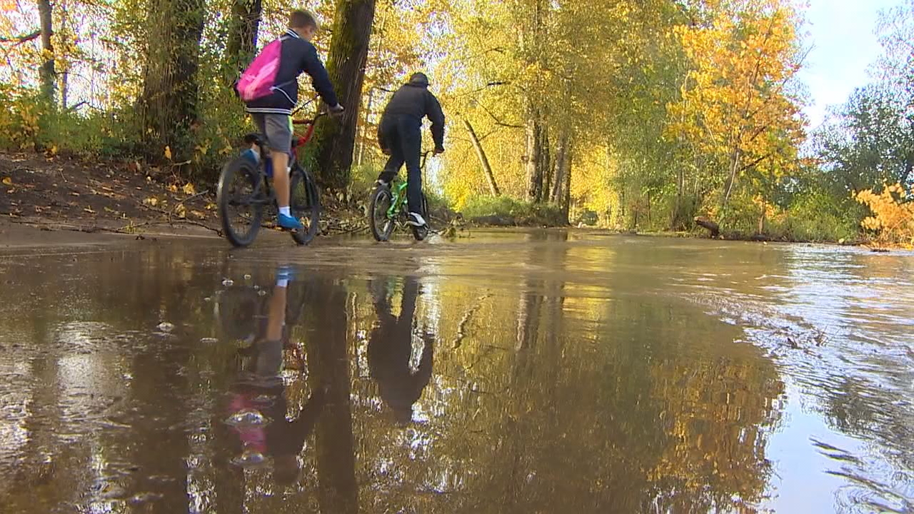 Puyallup River flooding forces partial closure of popular trail. (KOMO News)<p></p>