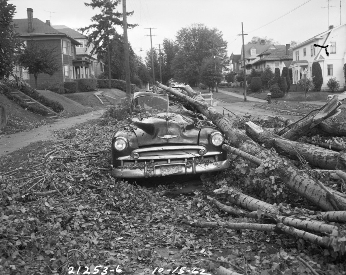 Columbus Day Storm Damage. 30th Ave. & E. Spruce St. in Seattle (Photo: Seattle Municpal Archive)