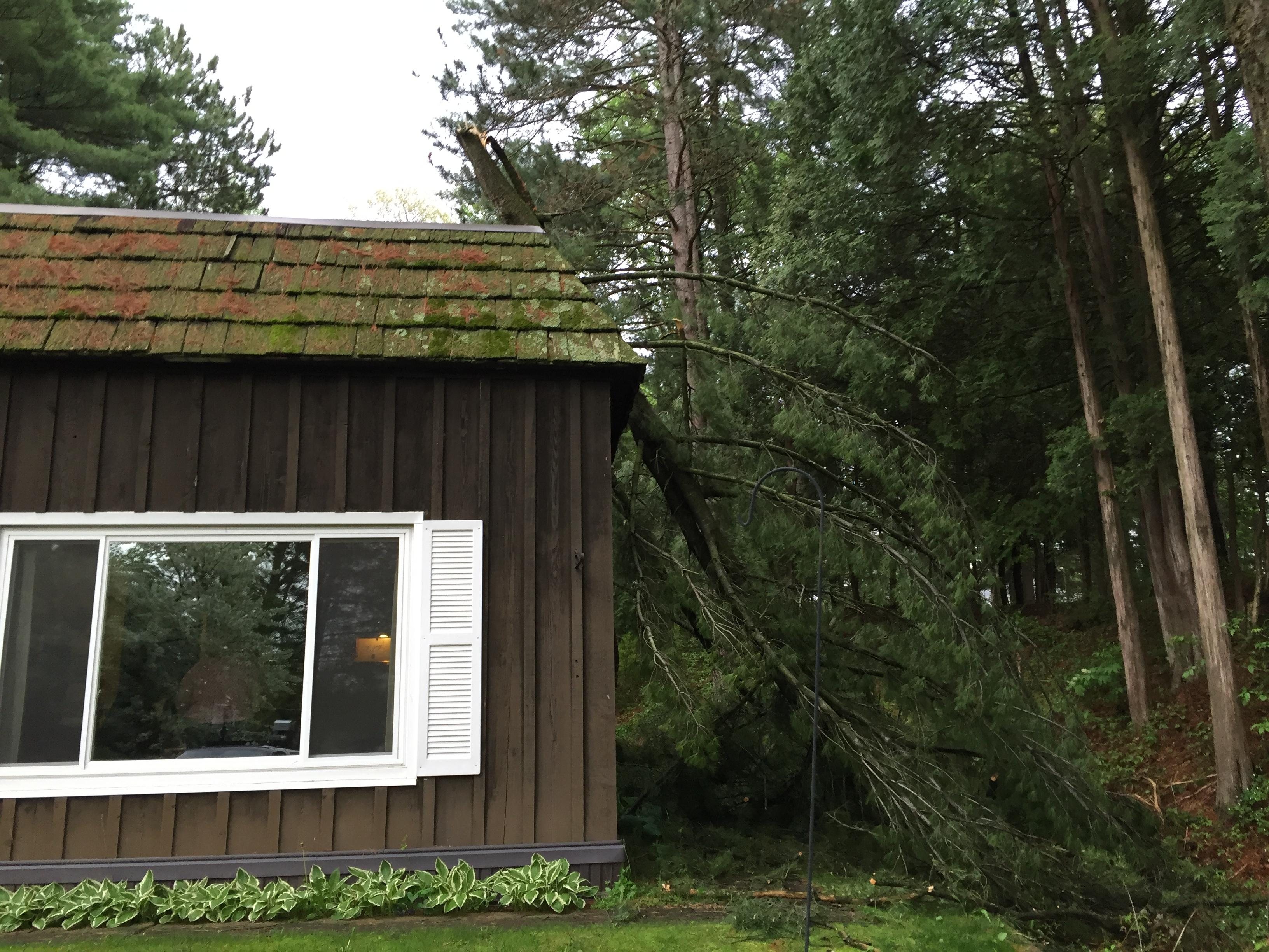 A large branch resting on the side of a home in Suamico after strong storms overnight.                        (Courtesy:Katy Kramer) May 18, 2017.