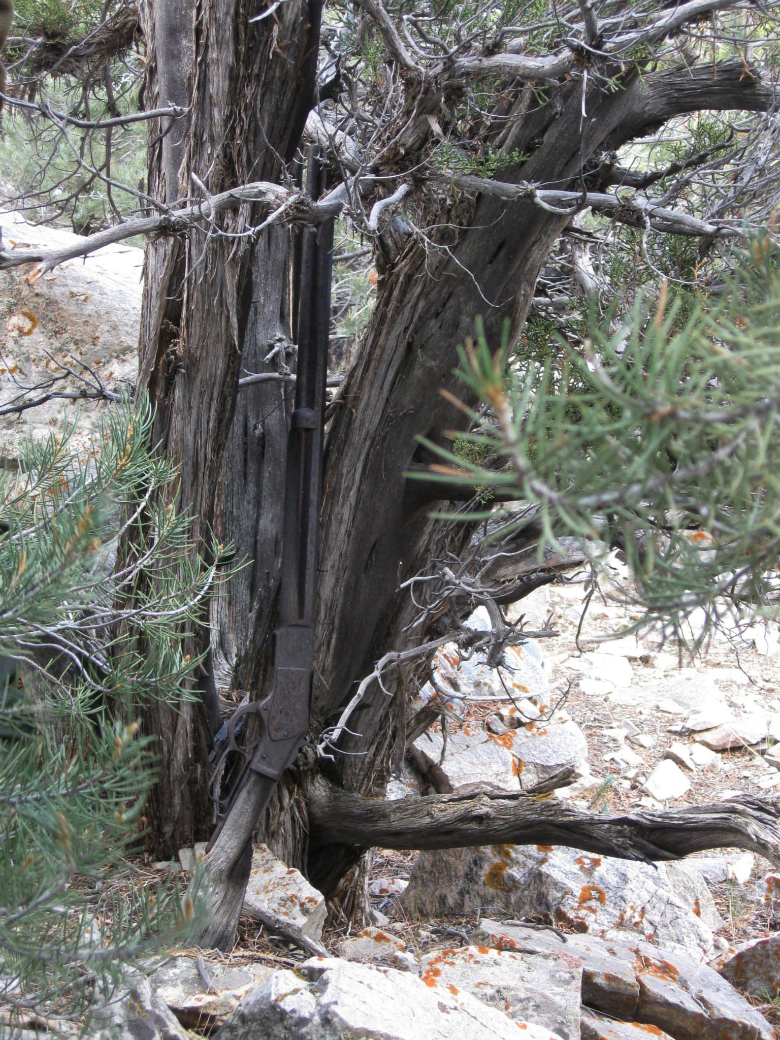"FILE - This image provided by the Great Basin National Park shows a Winchester Model 1873 rifle found in Nevada. The gun made in 1882 was found propped against a juniper tree in Great Basin National Park in November during an archaeological survey. rifle discovered five years ago leaning against a juniper tree at Great Basin National Park has a new home in an exhibit dedicated to the ""Forgotten Winchester"" at the park visitor center near the Nevada-Utah line. (National Park Service via AP, File)"