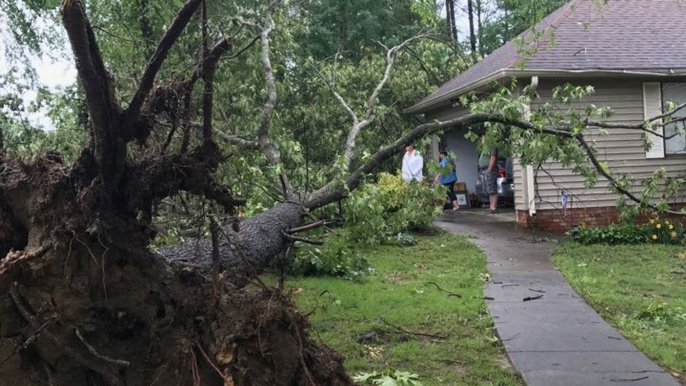 Strong storms cause damage throughout northwest Georgia | WTVC