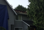 roof_collapse_lynnwood.jpg