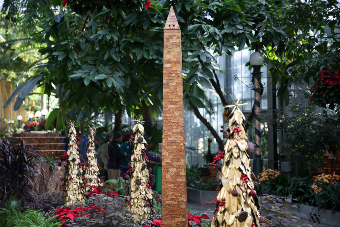 <p>Walk through the US Botanic Garden for &quot;Season's Greetings&quot; (Amanda Andrade-Rhoades/DC Refined)</p>