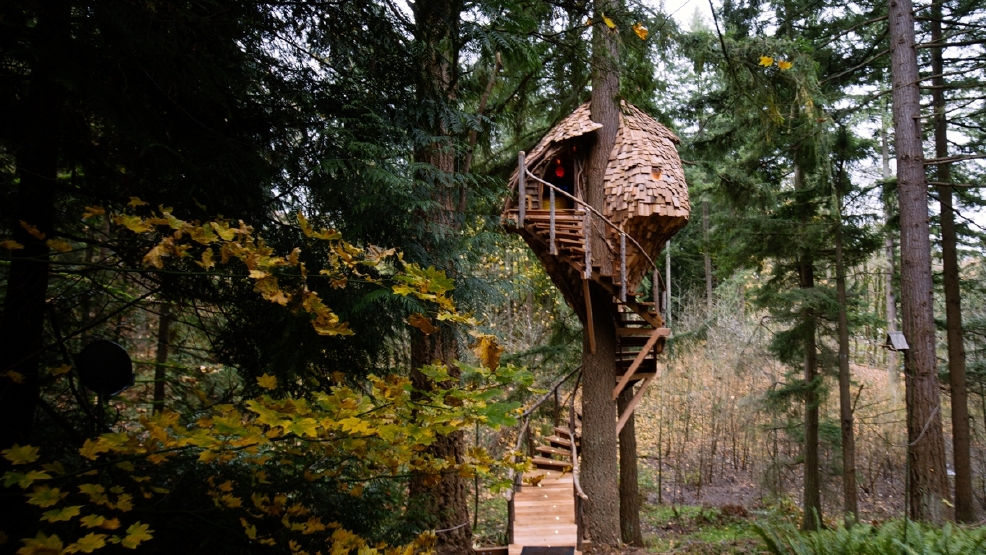 com treehouse www animal planet html with Local Couples Treehouse Masters Episode Airs Friday 289374631 on Its Treehouse Its Brewery Its Treehouse together with Super Treehouse further Take Look Pete Nelsons First Ever International Treehouse Norway in addition Round Tree House likewise Pete Nelson.
