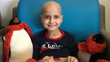 Maine boy who asked for Christmas cards loses battle with cancer