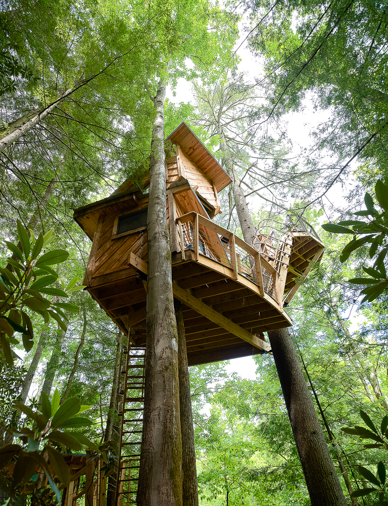 Canopy Crew builds tree houses all around North America. Some have glass ceilings and walls, others have hot tubs and slides. When it comes to gamping, Canopy Crew delivers. / Image: Chris Von Holle, courtesy of Canopy Crew // Published: 7.18.18