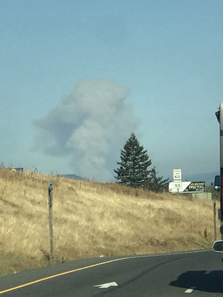 Fire ravages Eagle Creek area in the Columbia River Gorge (Tyler Carlson)