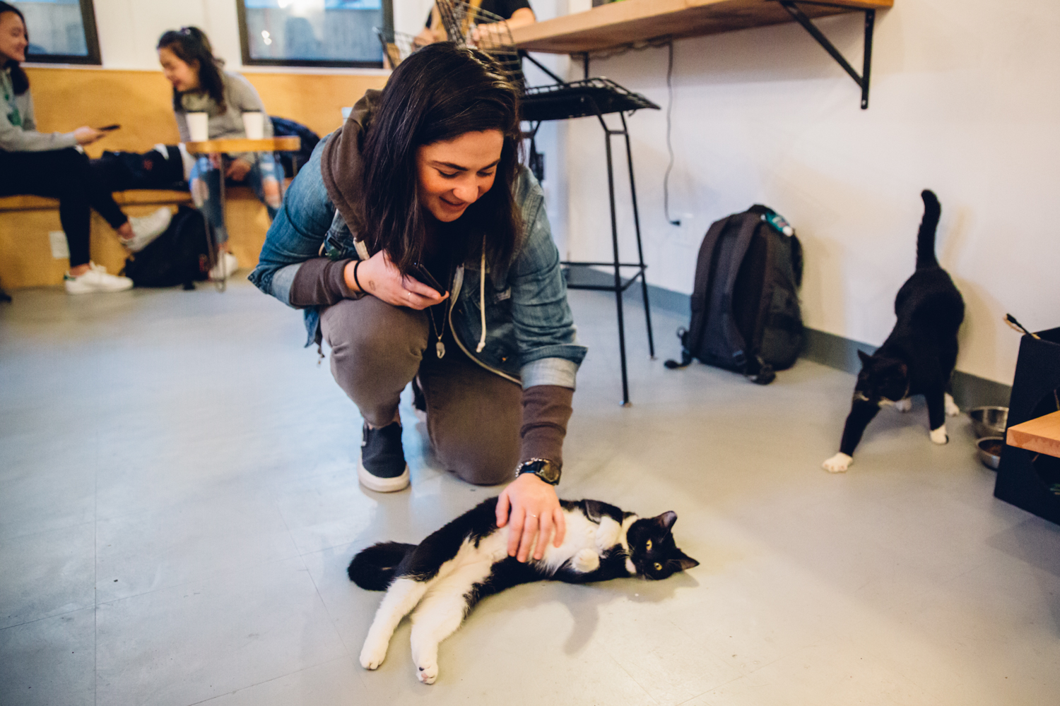 We first heard about NEKO Cat Cafe back in January of 2016 when they announced their interest in opening a shop on Capitol Hill. Now almost two years later, multiple fundraisers, and a lot of work - NEKO is open for business at 519 E. Pine St. They have coffee, beer, wine & light nibbles - all in the company of CATS! NEKO and RASKC have partnered to make sure all cats you interact with are adoptable. Important Note: You *do* have to make a reservation, can't just drop by. More info at nekoseattle.com! (Image: Sunita Martini / Seattle Refined)