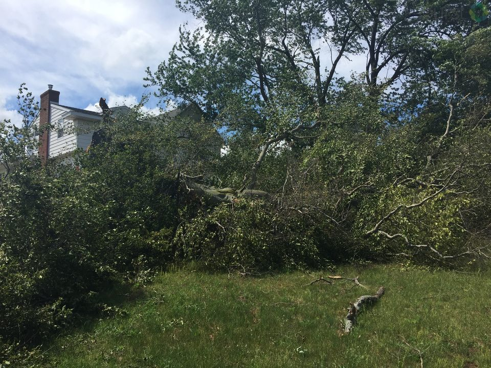 Now to Saginaw County, where there is some damage to report Sunday night because of the storms that passed through Saturday. (Photo Credit:  Kila Peeples)