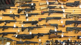 Oregon initiative would outlaw assault weapons, unless guns are registered with police
