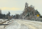 PKG-WHATCOM CO. ICE STORM.transfer_frame_5136.jpg