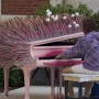 Nearly two dozen outdoor pianos entice Portlanders to tickle the ivories