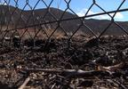 CHAIN LINK FENCE FIRE.jpg