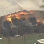 Fire engulfs hay barn in East Bexar County