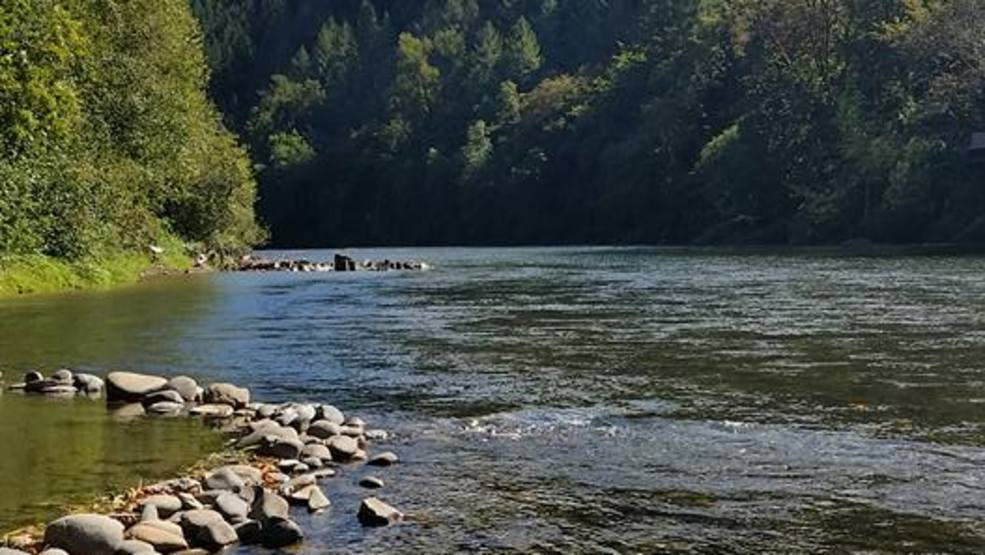 Mckenzie river guides concerned about trout distribution for Oregon fish and wildlife jobs
