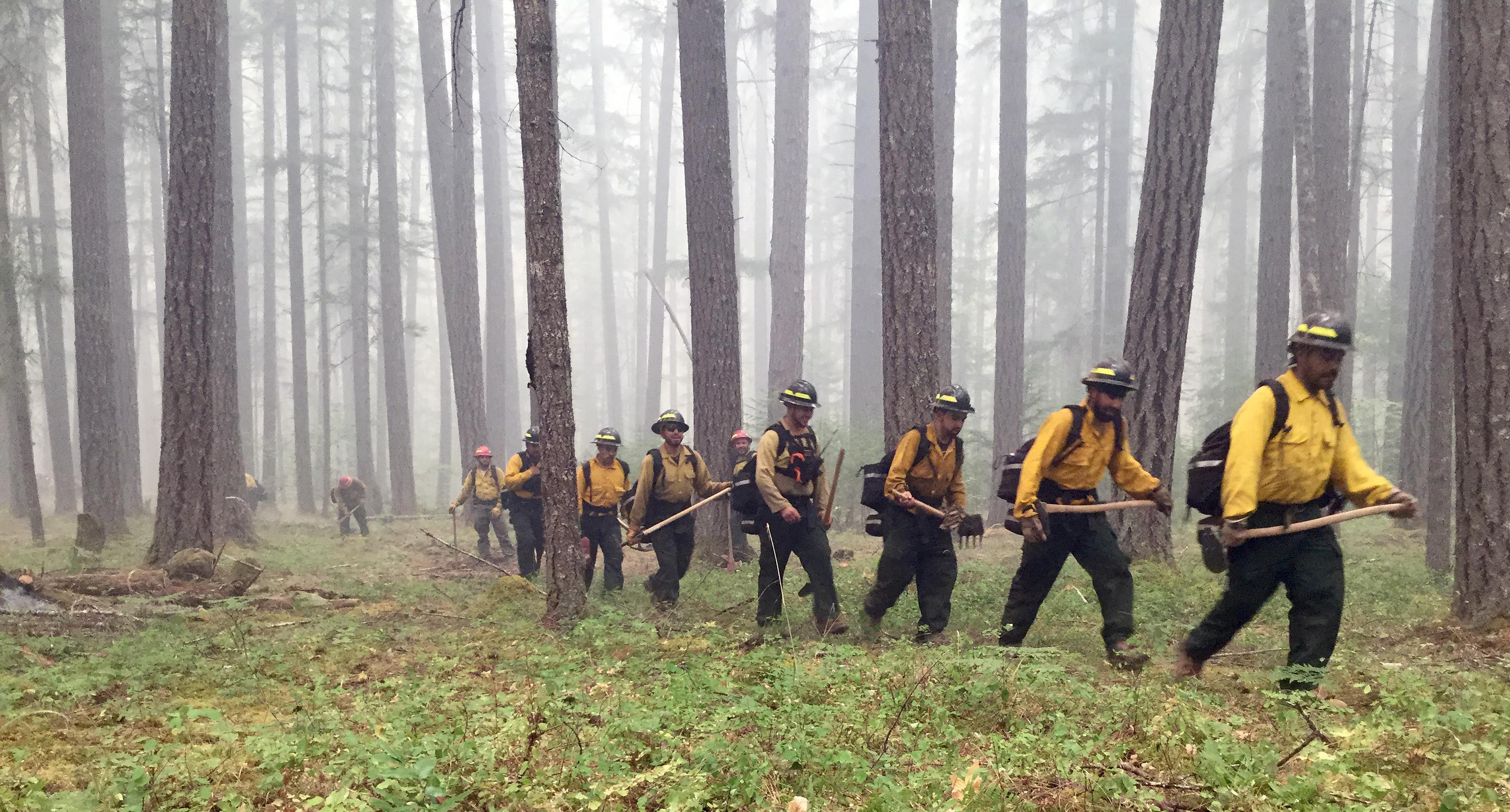 A fire crew hikes to its next assignment August 20, 2017. (Meredith Childs/Alaska Interagency Incident Management Team)