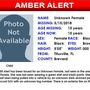 Amber Alert issued for abducted girl in central Florida