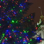 Green Bay lights Peace Tree