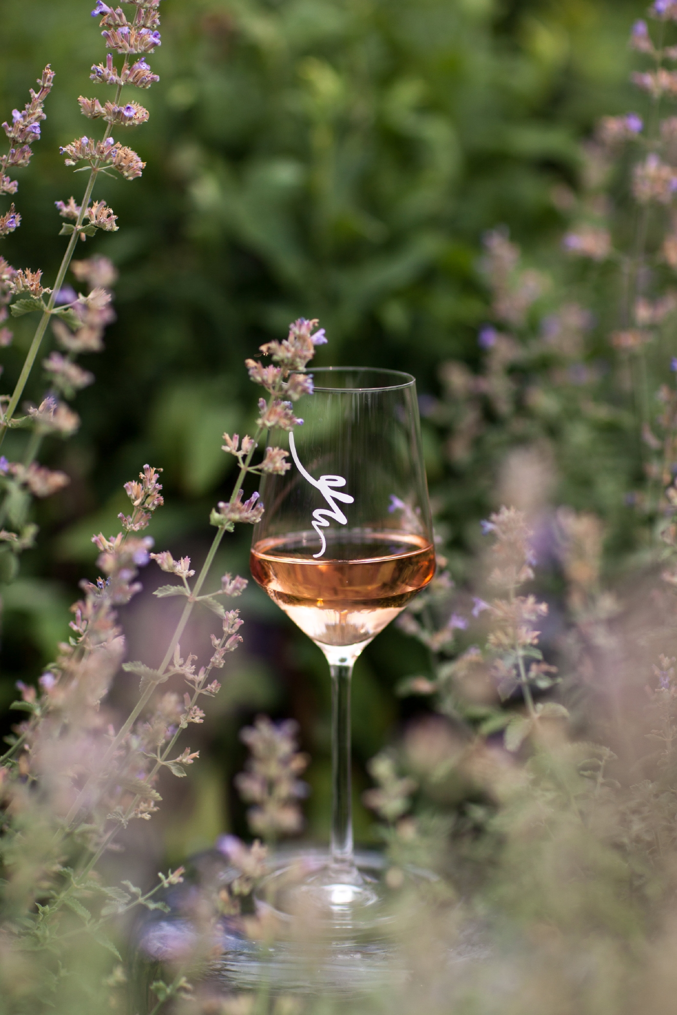 Looking for a Rose to serve at your next BBQ, or to pack in the picnic basket? This is your best bet as it goes well with burgers and fried chicken. (Image: Courtesy Early Mountain Vineyards)