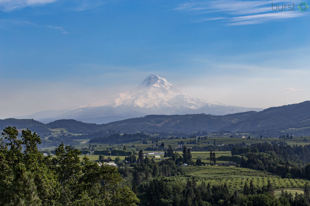 KVAL News asked Oregonians to share photographs of our state's beauty in honor of the anniversary of statehood: February 14. Statehood coincides with Valentine's Day, and if there's one thing most Oregonians love, it is Oregon! (Photos via burst.com/kval)
