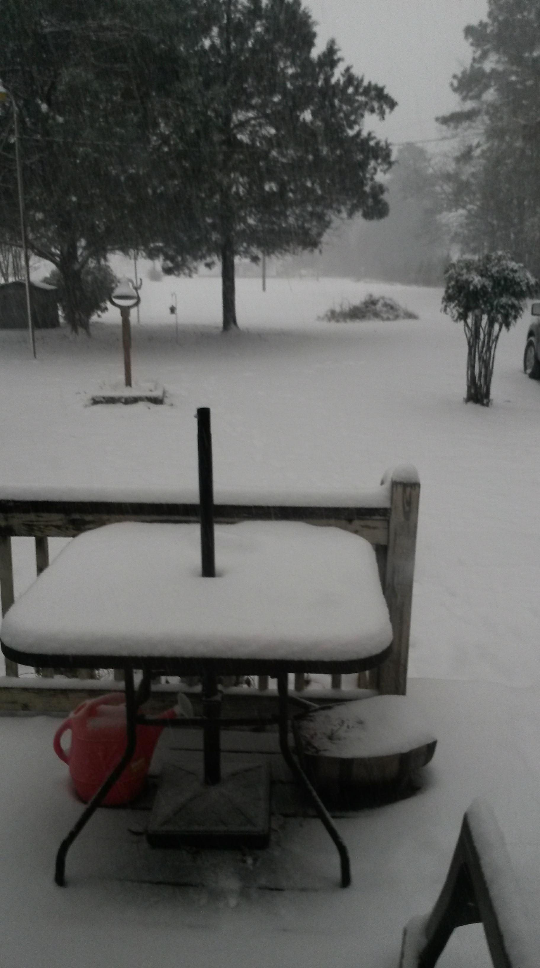 A snowy backyard (Submitted by Jimmy Evans Sr.)