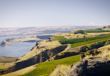 One of the most unique parks in the country is in Goldendale