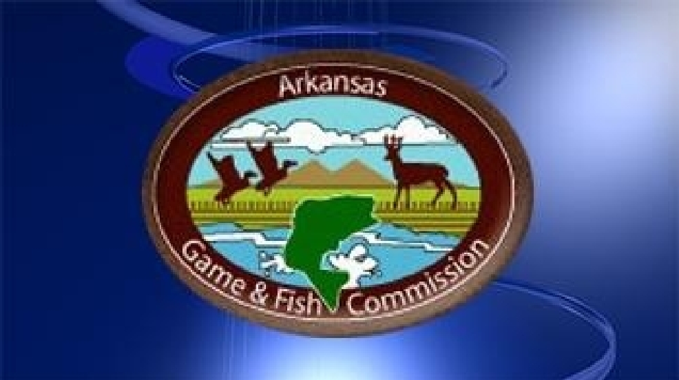 Illegal wildlife operation uncovered by wildlife officers for Arkansas game and fish commission