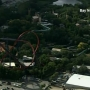Orangutan escapes enclosure at Busch Garden Tampa