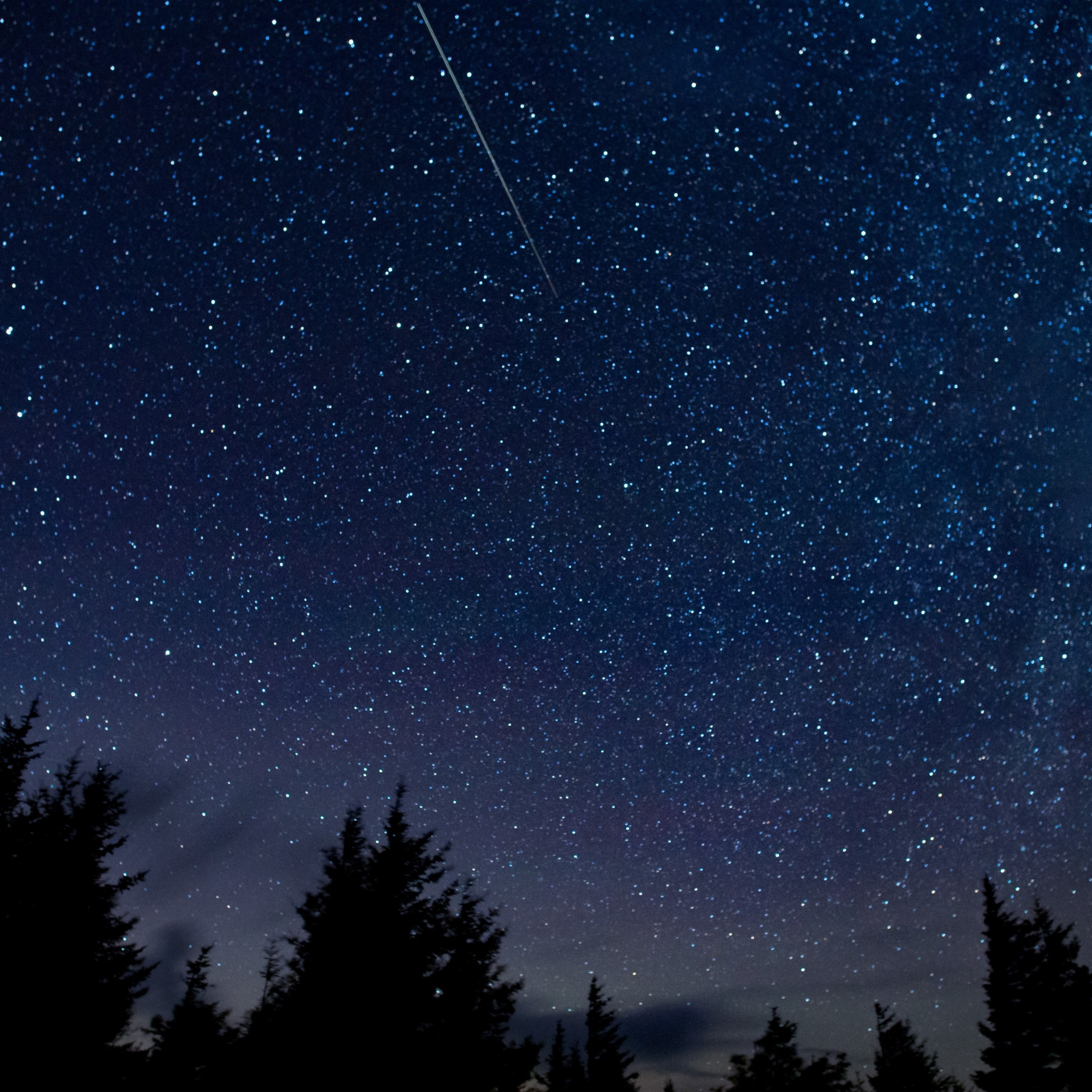 In this 30-second exposure, a meteor streaks across the sky during the annual Perseid meteor shower Thursday, Aug. 13, 2015, in Spruce Knob, West Virginia. (NASA/Bill Ingalls photo)