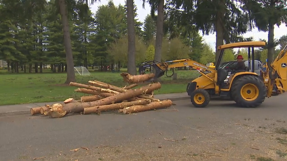 Power returns to Thurston County, but the cleanup continues