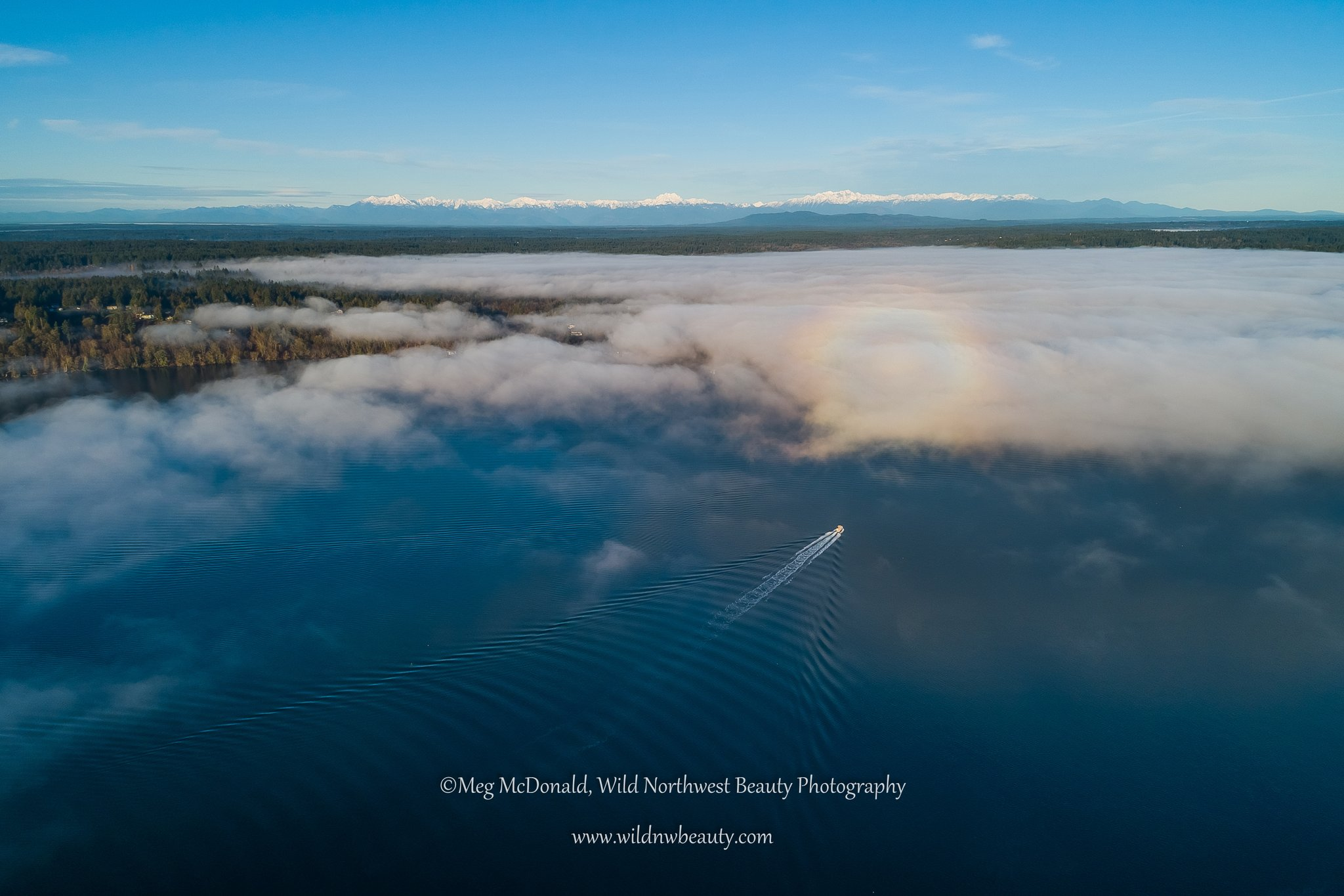 Glory spotted on fog bank over Puget Sound as created by drone (Photo: Meg McDonald / Wild Northwest Beauty Photography)