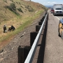 Motorcycle rider dies after crash on I-84 near The Dalles
