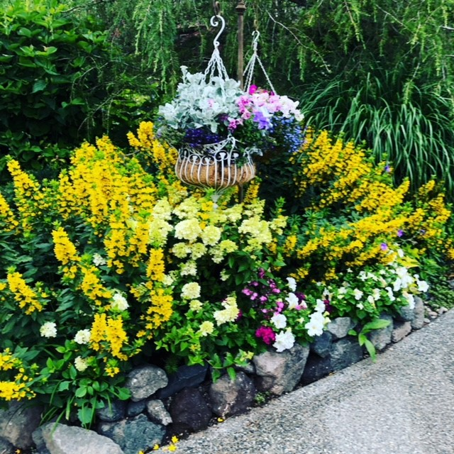 On Saturday, June 22, you are cordially invited to five private gardens in Bainbridge Island, through the Garden Conservancy Open Days program, 10 a.m. to 4 p.m. The Open Day is rain or shine, and no reservations are required. Admission is $10 per garden; children 12 and under are free. 10202 Rodal Court NE.  A Victorian, shabby chic, perennial garden full of flowers, vignettes, pathways, a rose garden, birdbaths, arbors, and a charming porch for entertaining. Many containers are filled with sweet peas, annuals, fuchsias, and hydrangeas. Many beautiful trees are home to birds galore and busy squirrels! There is an amazing collection of garden accoutrements and established bamboo. This garden has a lot of shade for hot afternoons and just the right amount of sun for flowers to bloom vigorously and keep the sweet peas performing from April to September. (Image courtesy of Stephanie Werskey).