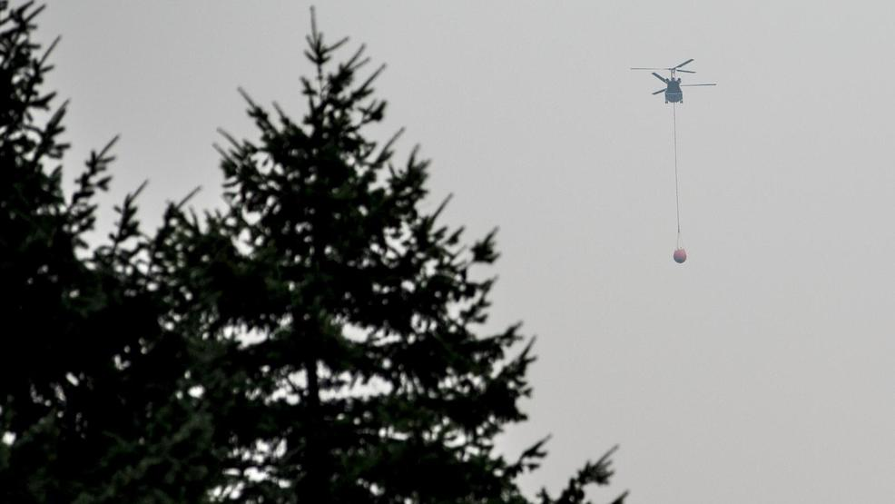 More Than 900 Firefighters Are Working To Contain The Eagle Creek Fire In  The Columbia River Gorge. Other Local Officials Are Working To Keep Pets  Safe And ...
