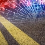 Pedestrian killed after being hit by tractor trailer