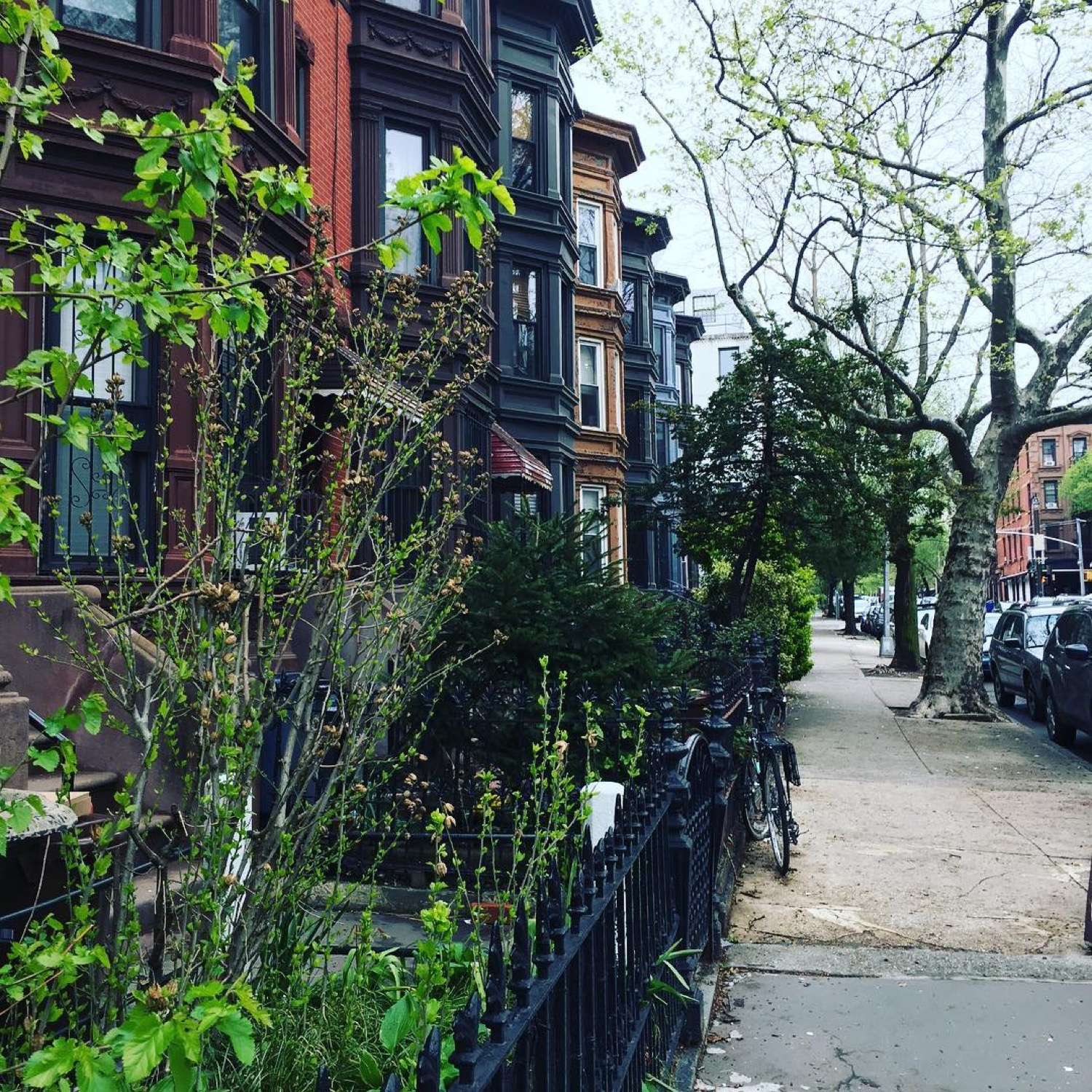 PLACE: Park Slope, Brooklyn / MILES FROM CINCY: 636 / ABOUT: Park Slope is walkable, historic, and absolutely lovely. It is the embodiment of a picturesque American urban landscape. / Image courtesy of Instagram user @margelsn // Published: 5.14.17