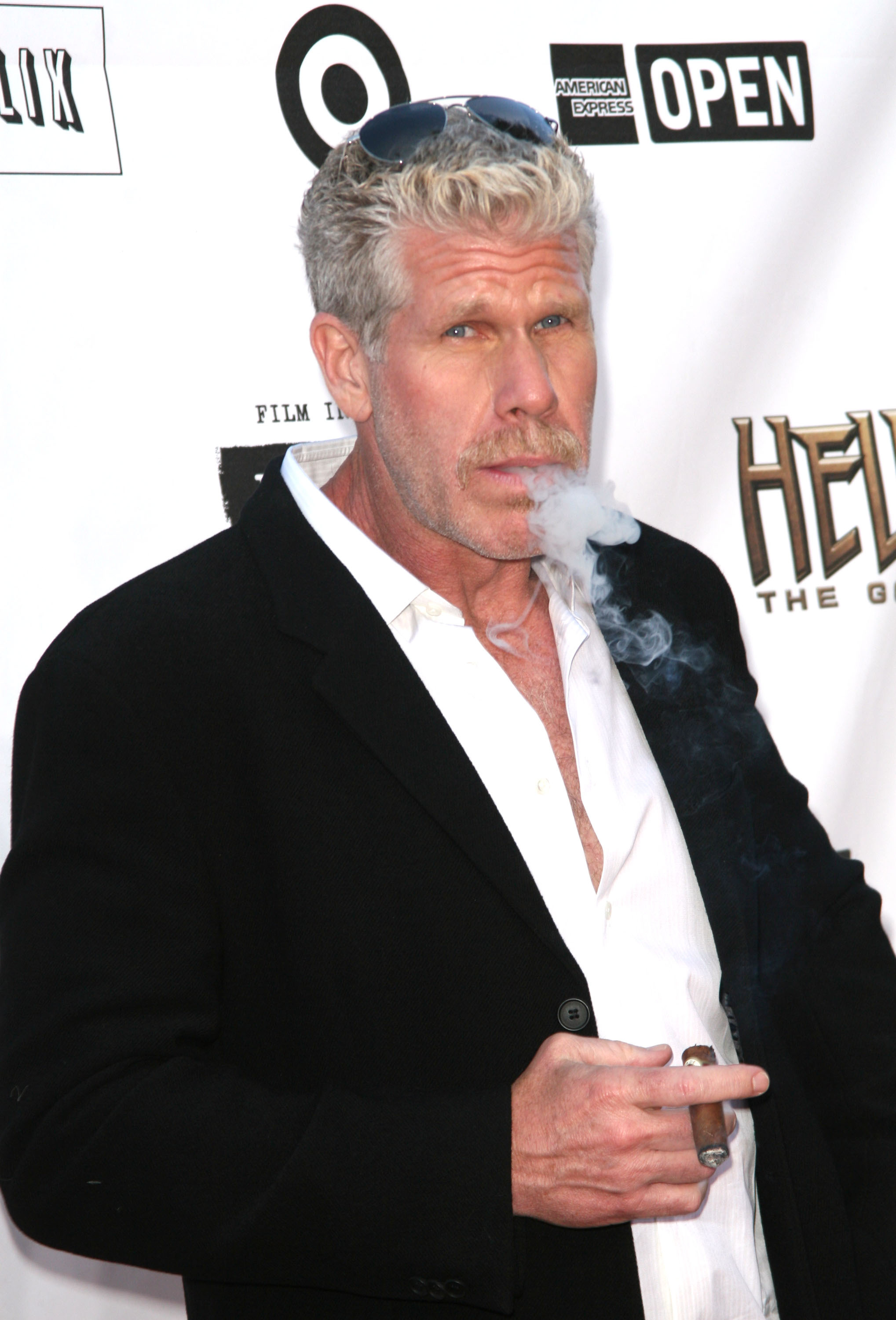 Ron Perlman The 'Hellboy 2: The Golden Army' premiere at the Mann Village Theater Los Angeles, California - 28.06.08  Featuring: Ron Perlman Where: California, United States When: 28 Jun 2008 Credit: WENN/Fayes Vision