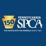 Two dogs found dead in bags in Stroud Twp., PSPCA investigating