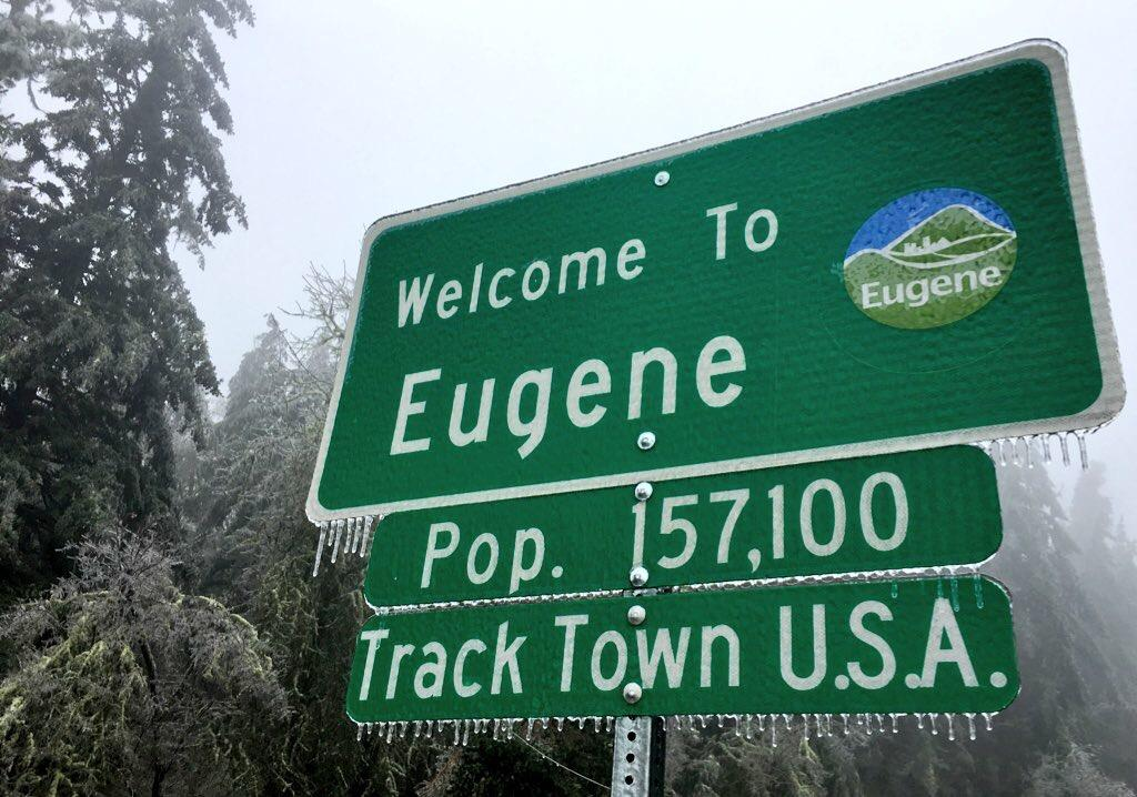 Upwards of 20,000 Eugene Water &amp;amp; Electric Board customers lost power as a result of the December 2016 ice storm. (SBG/Ellen Meny)<p></p>