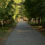 Woman fights off attacker during sexual assault at Hardberger Park, say police