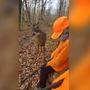 Deer has no fear, decides to check out young Ohio hunters